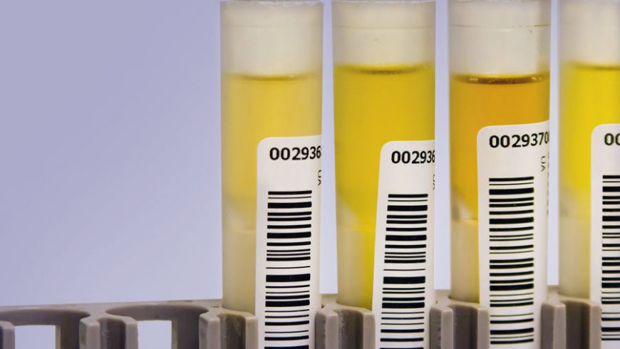 Oregon law employee drug testing